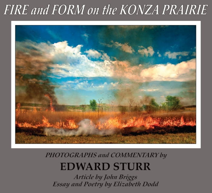 Fire and Form on the Konza Prairie